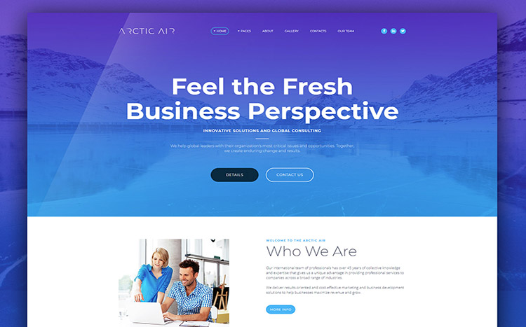 Artctic Business Startup Template