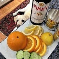 Pimm's Cup featured image