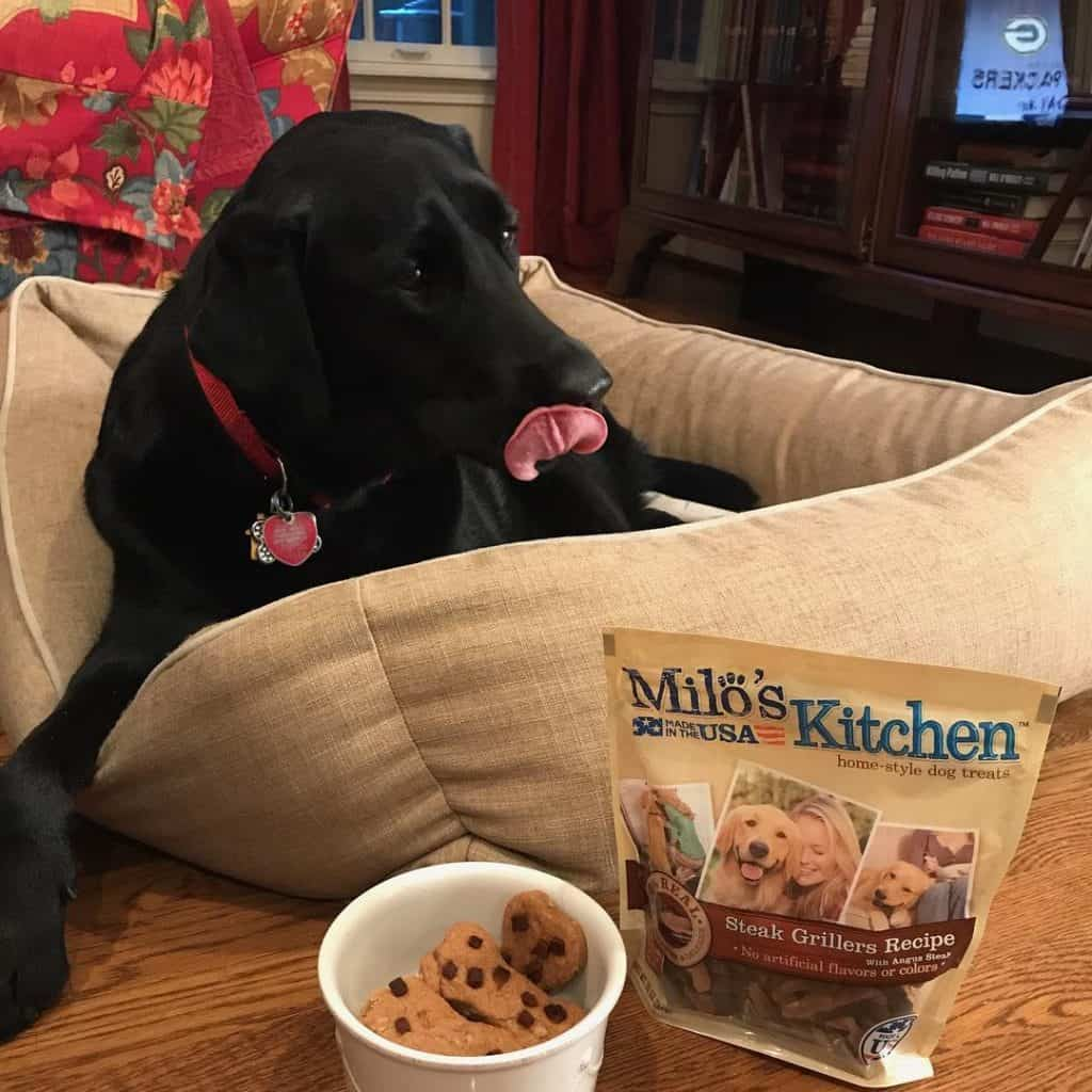 Peanut Butter Dog Bone Treat in a white dish next to a black lab in her bed