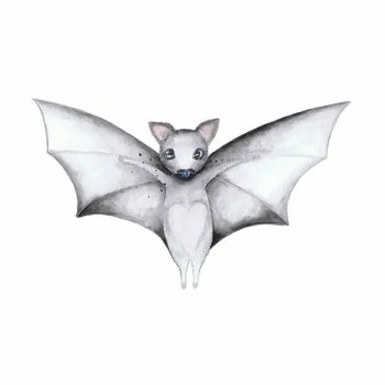 William the bat - Wall stories from ThatsMine