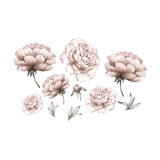 Peony Flower - Wall stories from ThatsMine