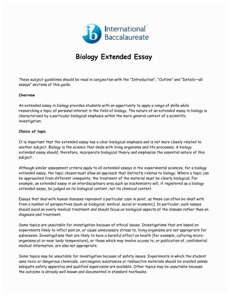 how to write an extended essay in english