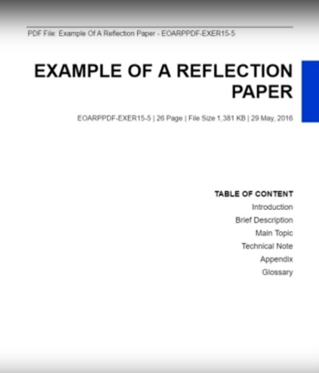 Writing A Self Reflective Essay : Page Comments