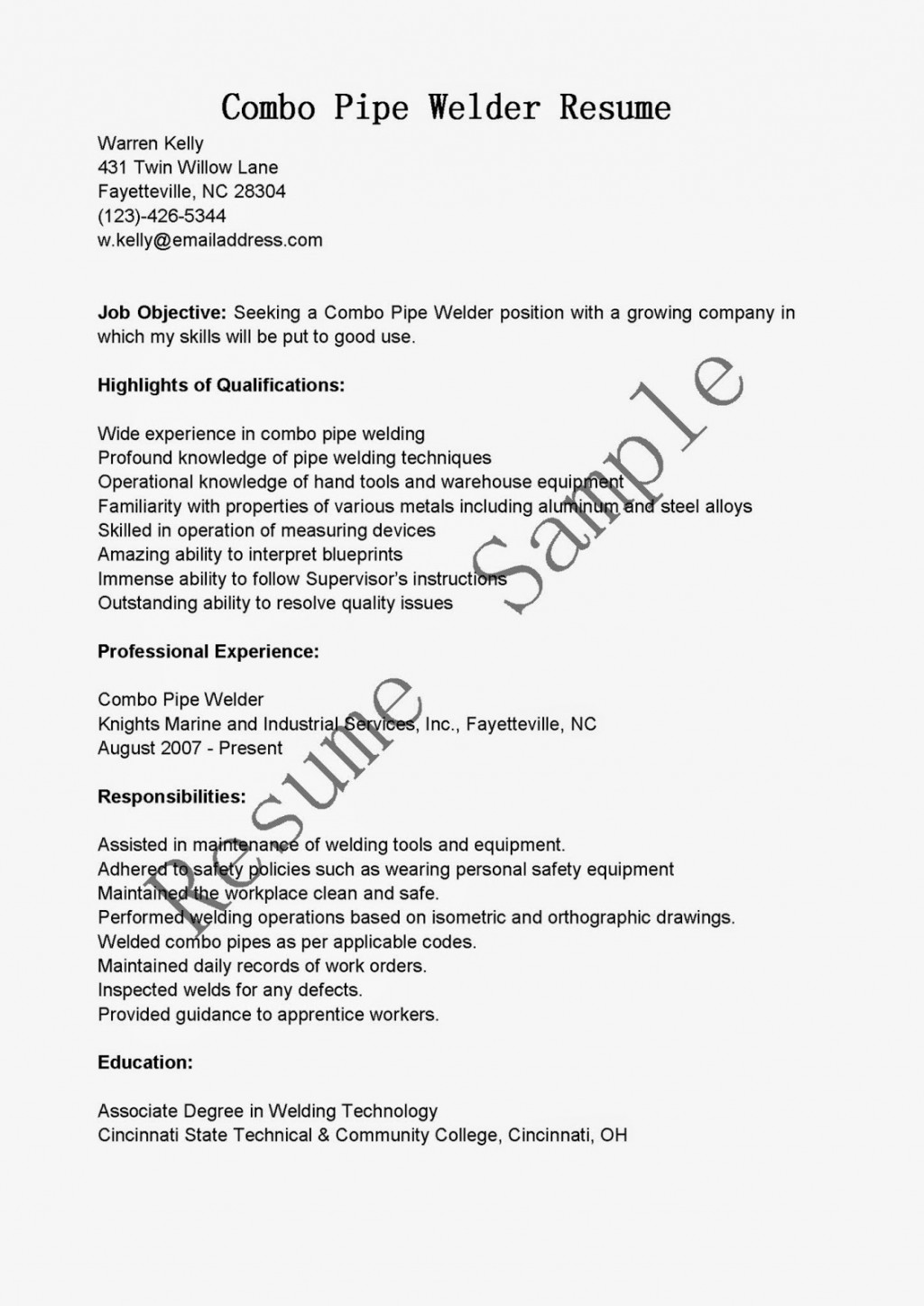 022 Book Review Essay Example Awesome Collection Of Thesis Statement Examples Resume Spectacular