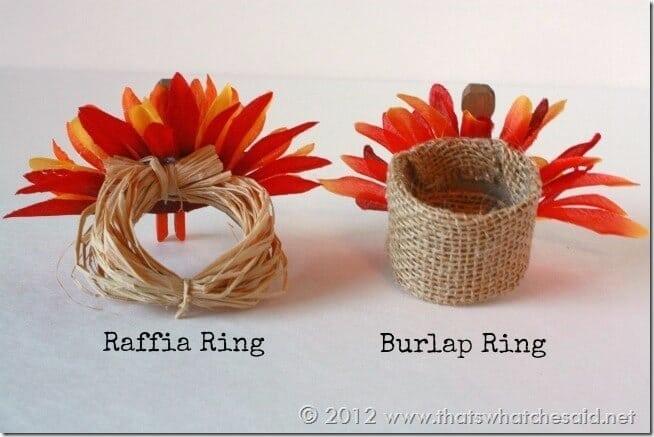 Napkin Ring Types 1