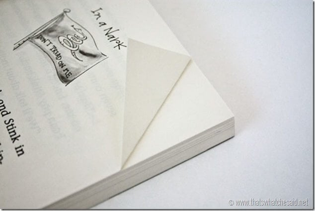 Simple Elastic Bookmark Tutorial at thatswhatchesaid.com