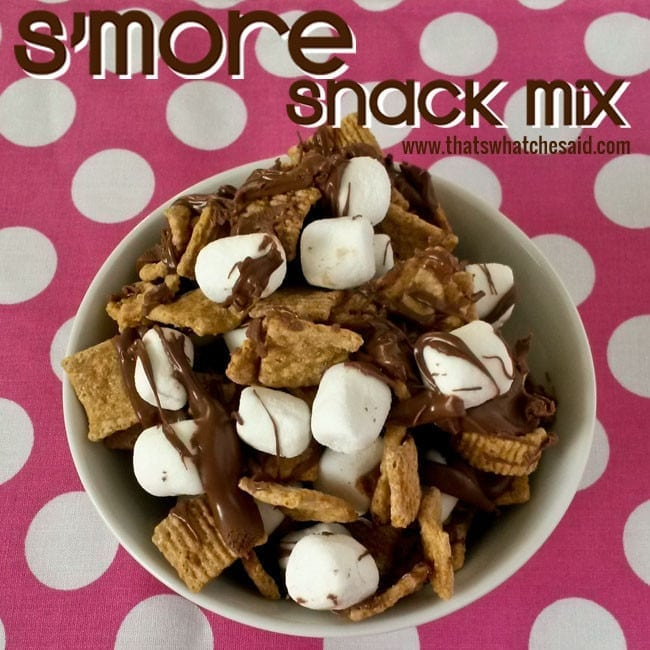 SMore Snack Mix Recipe at thatswhatchesaid.net