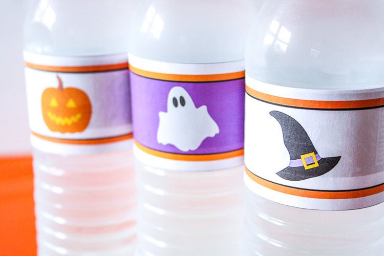 Halloween Pumpkin, Ghost and Witch Hat Water Bottle Labels