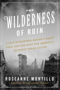 The Wilderness of Ruin by  Roseanne Montillo
