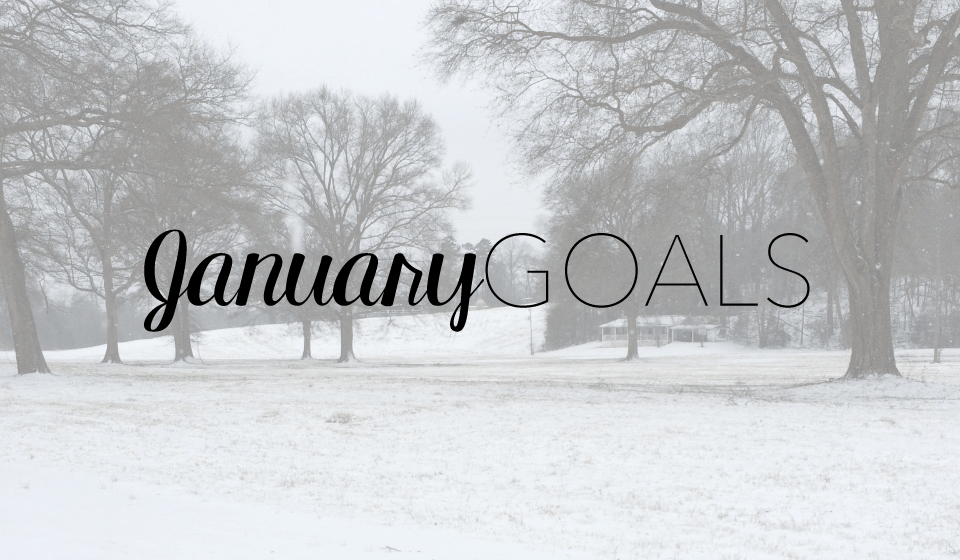 Goals for January 2018