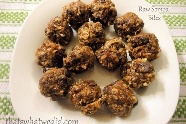 Raw Somoa Bites