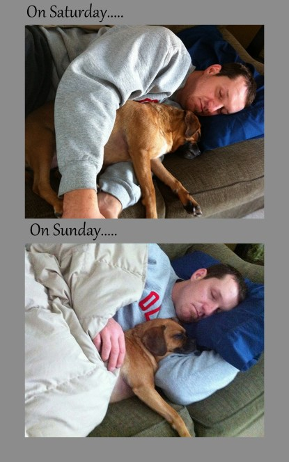 man and dog relaxing and napping