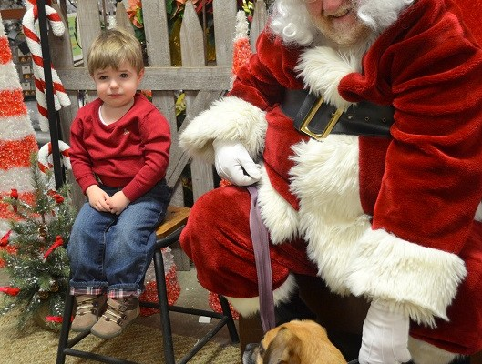 "Santa ""Part One"" at Oakland Nursery"