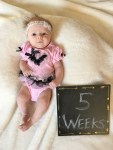 marlowe 5 weeks