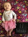 marlowe 11 weeks