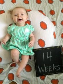 marlowe 14 weeks