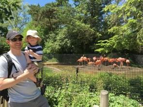 jenson and loren zoo