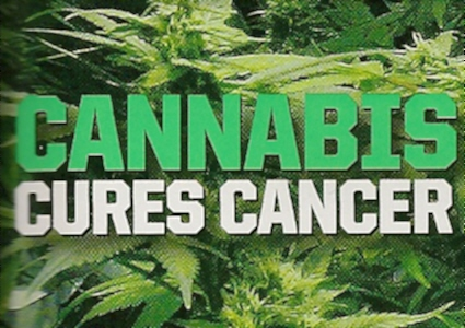 https://i2.wp.com/www.thcfinder.com/uploads/files/cannabis-cure-skin-cancer.jpg
