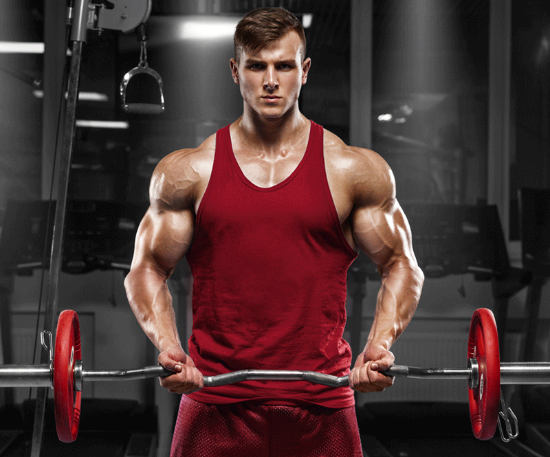 14 Tips To Stimulate Fast Muscle Growth Naturally - Thebodybuildingblog Gym - Health Fitness