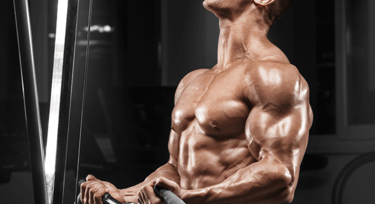top_4_biceps_workouts_for_bigger_arms