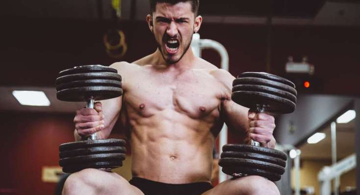 how-to-build-muscle-for-beginners