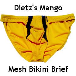 Dietz Mango Bikini Brief Review