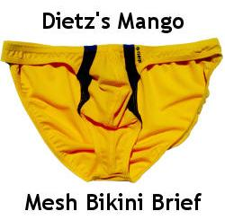 Dietz Mango Mesh Bikini Brief Review