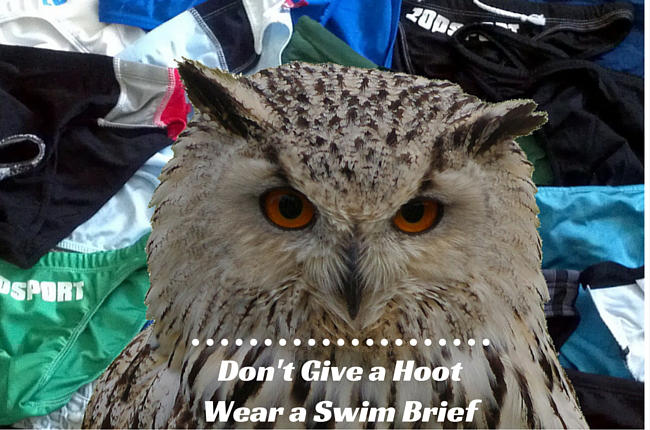 Don't Give a Hoot; Wear a Swim Brief