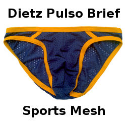 Review: Dietz Pulso Bikini Brief – Sport Mesh