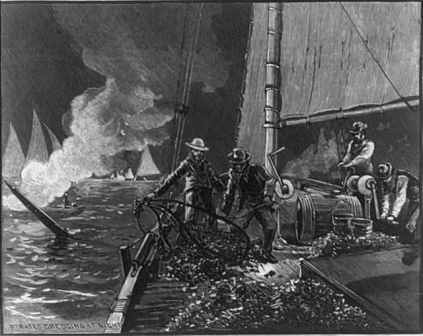 The Oyster War raged on the Chesapeake Bay and was portrayed in this 1884 Harpers magazine cover.  Law enforcement efforts to ride herd on watermen continues in 2014.