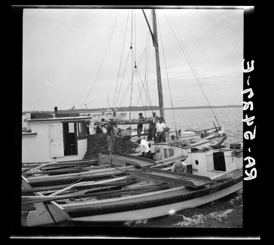 This Buyboat serves the oyster fleet on Wicomico River near  Rock Point, in Charles County Maryland