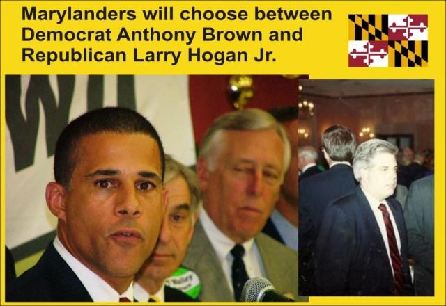 Brown vs Hogan graphic