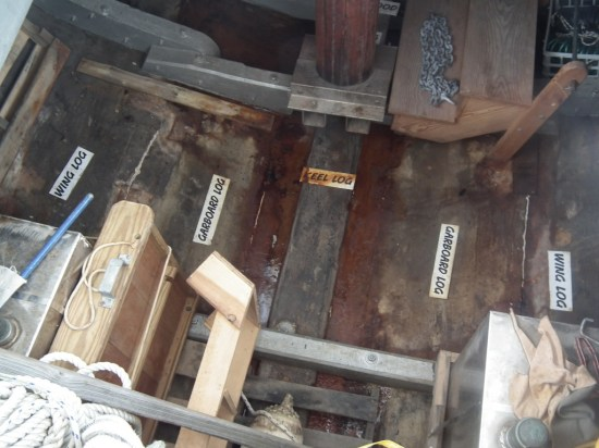 This view of the hold of the F. D. Crockett shows how the bottom of the ship was built, from logs. This hold was part of the storage area for oysters as they were also carried on the deck. The oyster buyboats were an important link from those who tonged the oysters to the surface and sold them to the Captain of the Buyboat who then transported them to wharves in Norfolk, Baltimore, Crisfield, Alexandria and Washington, D.C.  THE CHESAPEAKE TODAY photo
