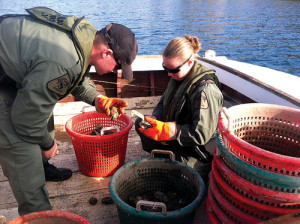Two NRP officers check a waterman's catch.