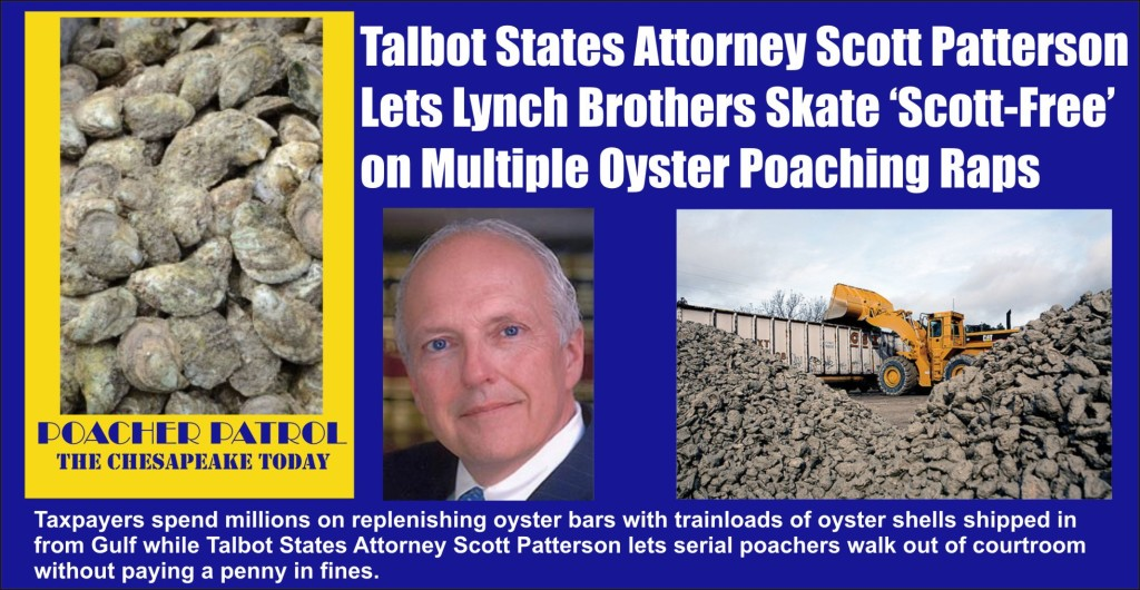 Talbot States Attorney Scott Patterson lets Lynch Brothers skate on charges without paying a penny in fines for oyster poaching