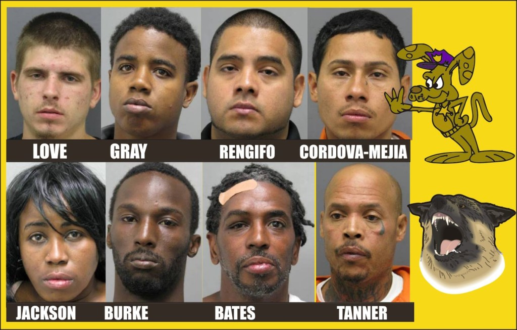 Prince William Police Beat for June 9 2015