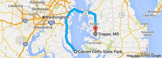 DUI bus driver's trip from Calvert Cliff to Trappe Md 111815