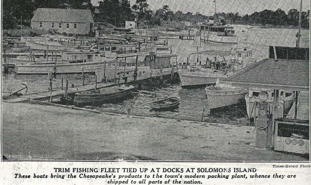 Capt. Joe Lore's fishing fleet at Solmon's Island Md. Times Herald Photo