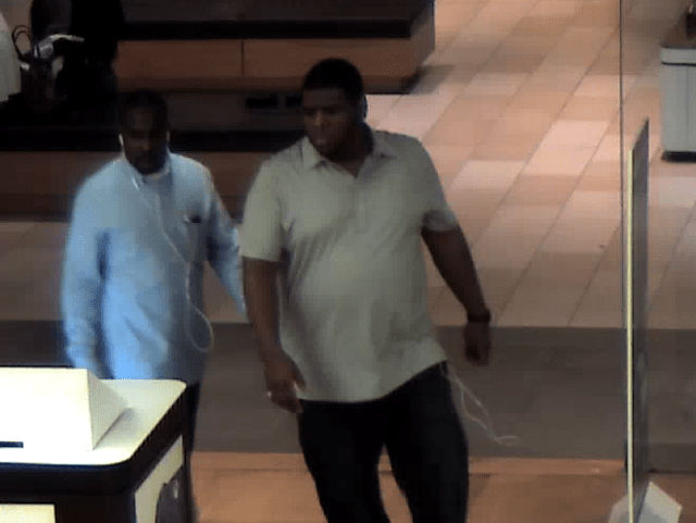 Microsoft Store bandits try to decide what kind of laptop to steal.