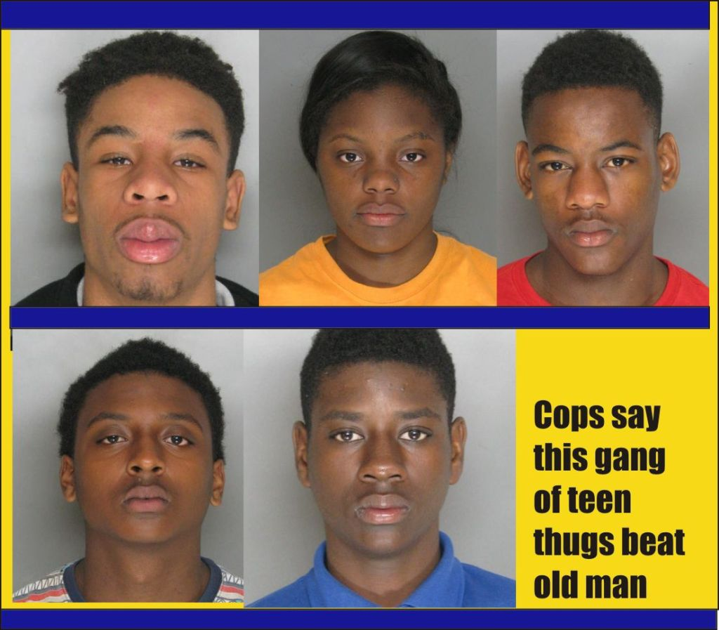 Cops say this gang of thugs beat old man in Dundalk Md
