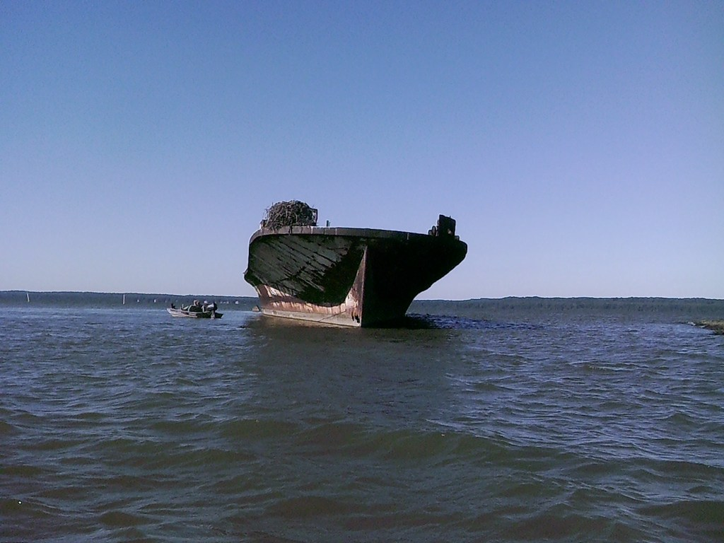 Mallows Bay Accomac Wreck THE CHESAPEAKE TODAY photo by Cap'n Larry Jarboe