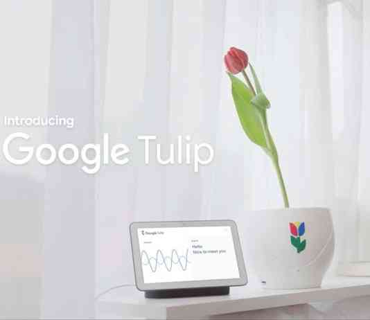 Google Tulip | Available on April 1, 2019