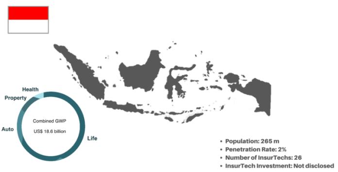 Indonesia S Demographics Drive Digital Life And Health Innovation The Digital Insurer