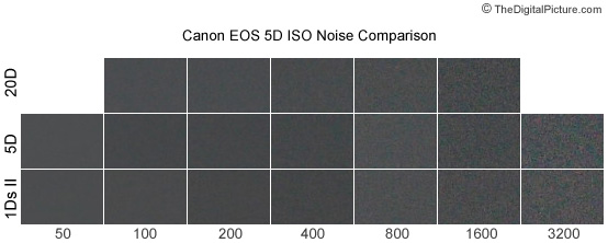 Canon EOS 5D ISO Noise Comparison