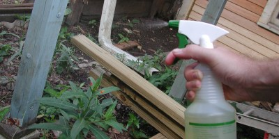homemade natural pesticide