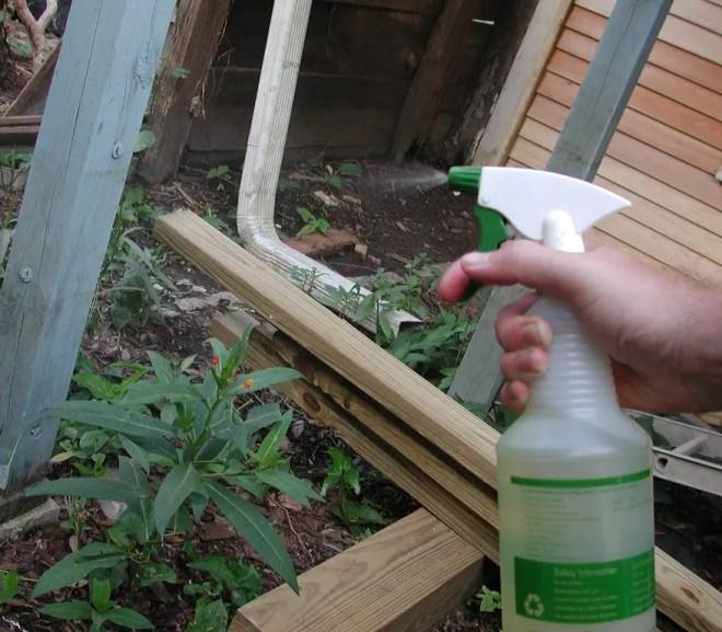 homemade natural pesticides
