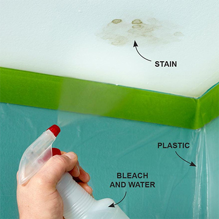 how to get rid of mould on the ceiling