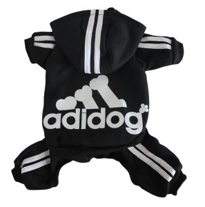 Dog Sweater And Track Suite