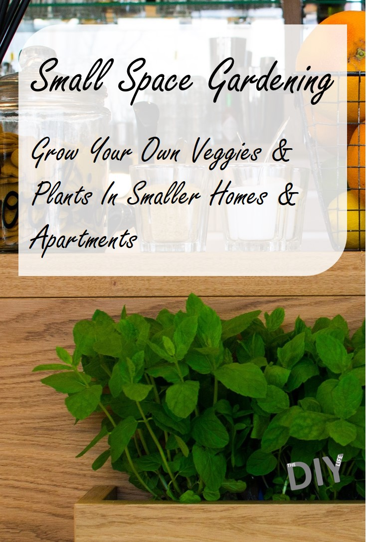 Small Space Gardening - All You Need To Know To Grow Your Own Veggies & Plants