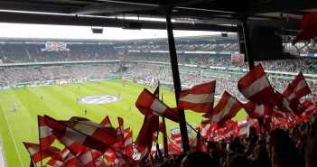Bremen vs F95 - Fähnchen im Werderkäfig (Foto: Marcus Finger)